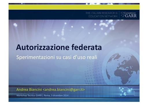Ws14 - Presentazione - A. Biancini