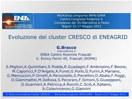 WS12 - presentazione - G. Bracco